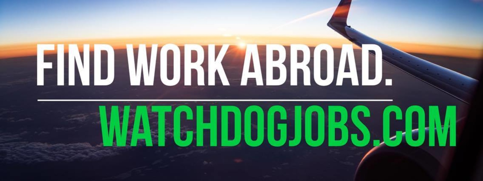 Watchdog Jobs Work Your Next Contract Watchdog Jobs