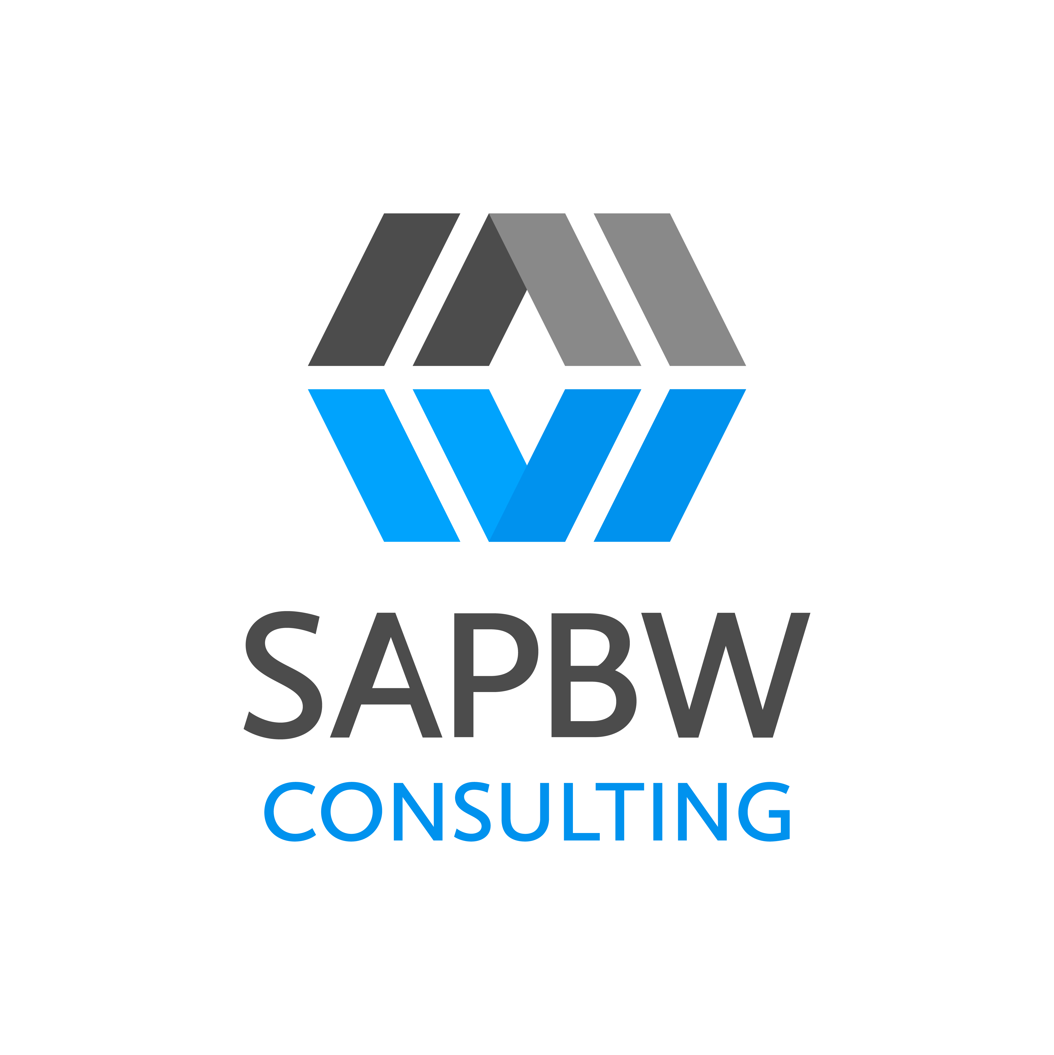 Estimate Your SAP BW Project Consulting Resource Needs|SAP HANA