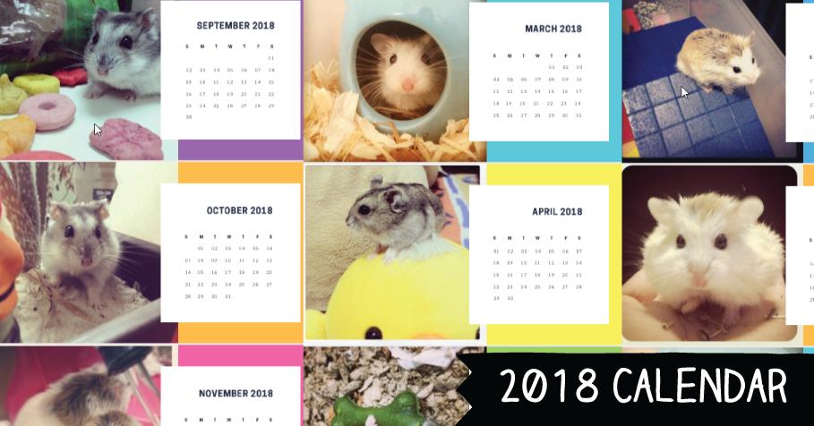 Hamster Facts Archives - Dwarf Hamster Blog